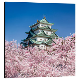 Stampa su alluminio  Nagoya castle with cherry blossom in spring - Jan Christopher Becke