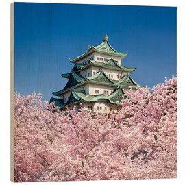 Stampa su legno  Nagoya castle with cherry blossom in spring - Jan Christopher Becke