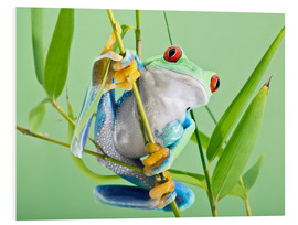 Stampa su PVC  Red-eyed tree frog - Linda Wright