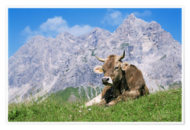 Poster  Cow on a mountain meadow - Bjorn Svensson