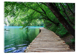 Stampa su vetro acrilico  Plitvice Lakes National Park Boardwalk - Renate Knapp