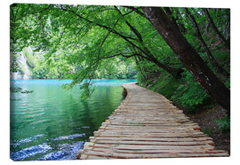 Stampa su tela  Plitvice Lakes National Park Boardwalk - Renate Knapp