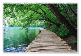 Poster Premium  Plitvice Lakes National Park Boardwalk - Renate Knapp