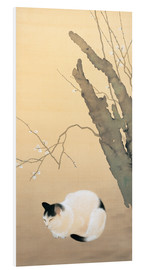 Forex  Cat and plum blossoms - Hishida Shunso