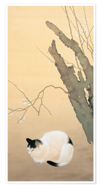 Poster  Cat and plum blossoms - Hishida Shunso
