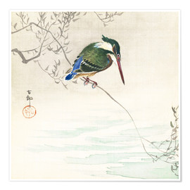 Poster Premium  The kingfisher - Ohara Koson