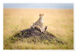 Poster Premium  Leopard mother - Ted Taylor