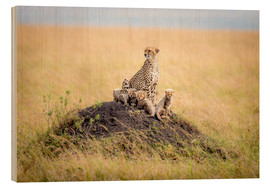 Ted Taylor - Leopard mother