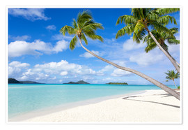 Poster  White beach with palm trees, Tahiti, French Polynesia - Jan Christopher Becke