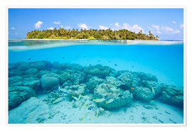 Poster Premium  Reef and tropical island, Maldives - Matteo Colombo