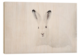 Stampa su legno  Mountain hare in winter - Peter Wey
