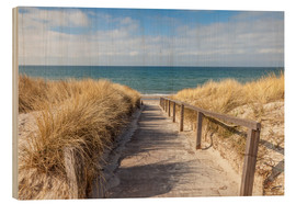 Legno  Way to the beach on the Baltic Sea - Christian Müringer