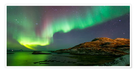 Poster  Northern Lights near Tromso - Louise Murray