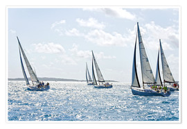 Poster Premium Sailboat regattas