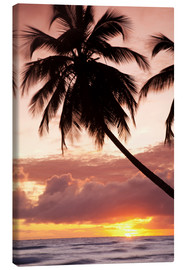 Tela  Tropical sunset, Bridgetown, Barbados, West Indies, Caribbean, Central America - Angelo Cavalli