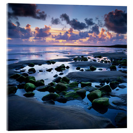 Stampa su vetro acrilico  Sunset over rock pool, Strandhill, County Sligo, Connacht, Republic of Ireland, Europe - Stuart Black