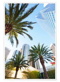 Poster Premium  Palm trees in Los Angeles - Gavin Hellier