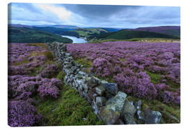 Stampa su tela  Heather covered Bamford Moor and dry stone wall - Eleanor Scriven