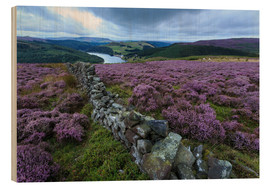 Legno  Heather covered Bamford Moor and dry stone wall - Eleanor Scriven