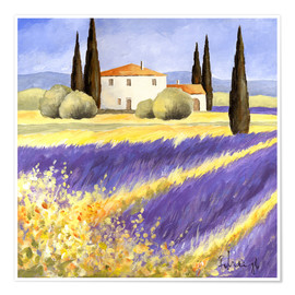 Poster Premium  Light of Provence - Franz Heigl