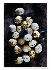 Poster Premium  Quail eggs on Ebony - K&L Food Style