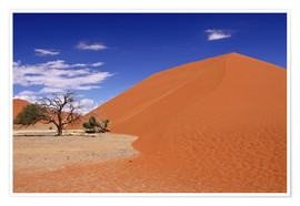Poster Premium  Dunes of the Namib, Namibia - wiw