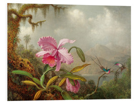 Forex  Cattleya Orchid and Three Brazilian Hummingbirds - Martin Johnson Heade