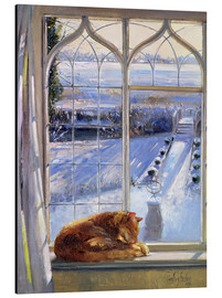 Stampa su alluminio  Cat in the Window - Timothy Easton
