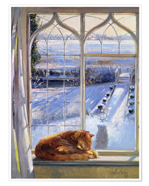 Poster Premium  Cat in the Window - Timothy Easton