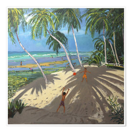 Poster Premium  Palm trees, Clovelly beach, Barbados - Andrew Macara