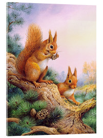Stampa su vetro acrilico  Pair of Red Squirrels on a Scottish Pine - Carl Donner