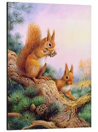 Alluminio Dibond  Pair of Red Squirrels on a Scottish Pine - Carl Donner