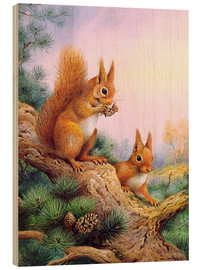 Legno  Pair of Red Squirrels on a Scottish Pine - Carl Donner