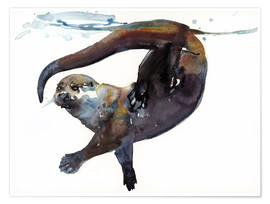 Poster Premium  Sea otter in the water - Mark Adlington