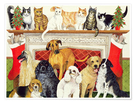 Poster Premium Dogs and Cats