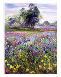 Poster Premium Flower field with tree