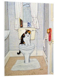 Forex  Cat on the Loo - Ditz