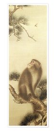 Poster Premium  Monkey watching a dragonfly - Japanese School