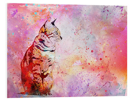 Forex  Cat - Andrea Haase