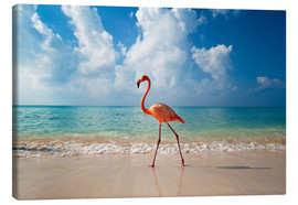 Stampa su tela  Flamingo on the beach - Ian Cuming