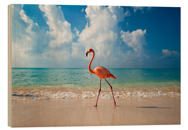 Stampa su legno  Flamingo on the beach - Ian Cuming