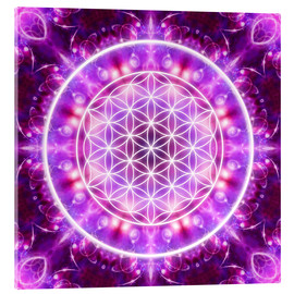 Vetro acrilico  Flower of Life - Transformation - Dolphins DreamDesign