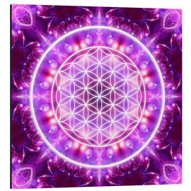 Alluminio Dibond  Flower of Life - Transformation - Dolphins DreamDesign