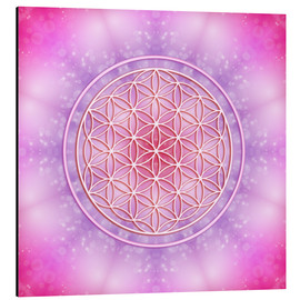 Alluminio Dibond  Flower of Life - Unconditional Love - Dolphins DreamDesign