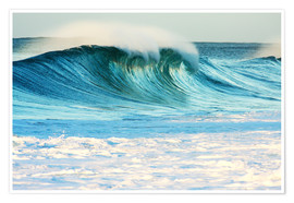 Poster Premium  Waves in Hawaii - Vince Cavataio