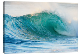 Tela  Shiny wave in Hawaii - Vince Cavataio