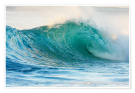 Poster Premium  Shiny wave in Hawaii - Vince Cavataio
