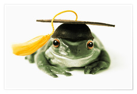 Poster Premium  Frog with completion hood - Darwin Wiggett