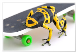 Poster Premium  Frog On A Skateboard - Corey Hochachka