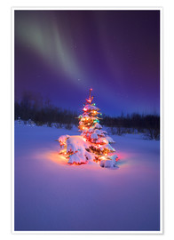 Poster Premium  Christmas tree and Northern Lights - Carson Ganci